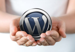 content-management-system-pembuatan-website-wordpress
