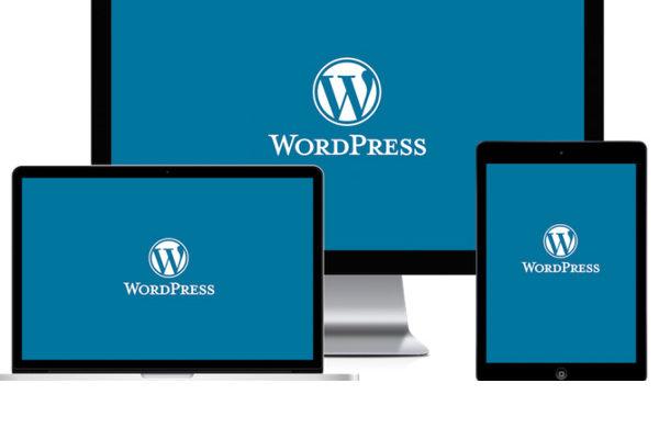 buat-website